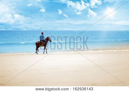 hourse ride on the beach on a sunny day