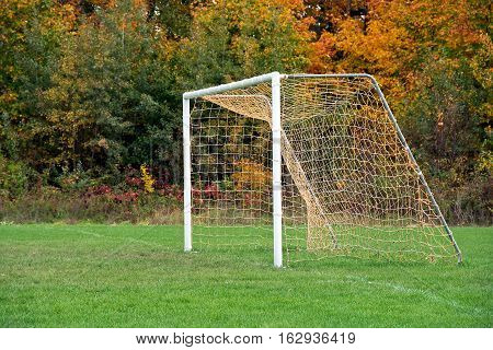 empty soccer goal new on field with autumn woods background