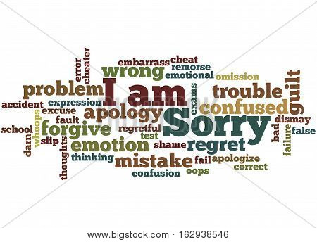 I Am Sorry, Word Cloud Concept 2