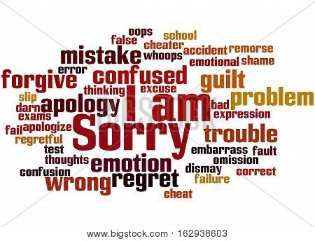 I Am Sorry, Word Cloud Concept 5