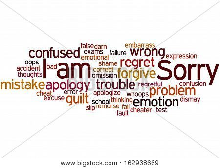 I Am Sorry, Word Cloud Concept 8