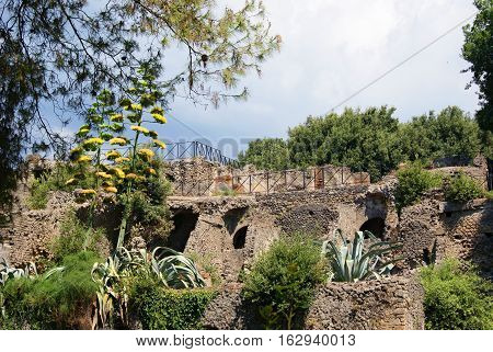 Beginning of archaeological excavations the remains of buildings in Rome Italy sunny day with a few clouds in the blue sky lots of grass plants and flowers around.