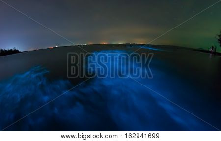 Bioluminescence of plankton. Glowing wave taken with long exposure.