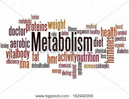 Metabolism, Word Cloud Concept