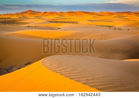 Sand Dunes Of The Sahara Desert, Morocco