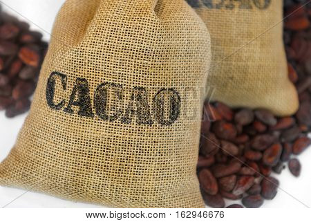 cacao beans in jut bag with inscription