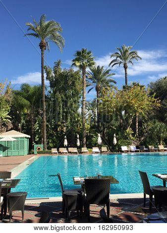Swimming Pool and palm trees in Marrakesh, Morocco