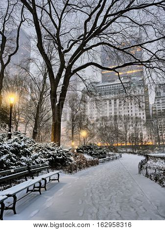 Central Park New York City early morning at sunrise in winter snow storm