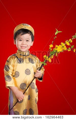Portrait of a handsome Asian baby boy on traditional festival costume holding Hoa Mai tree (Ochna Integerrima) flower. Cute little Vietnamese boy in ao dai dress smiling. Tet holiday. Lunar New Year.