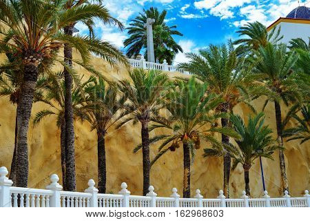 picturesque colourful Spanish Benidorm in the summer