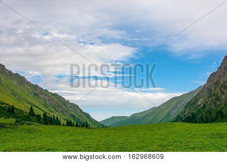 Green Mountain Meadows Of The Tien Shan, Kyrgyzstan.