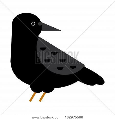 Black raven and wild nature vector illustration. Flat cartoon wildlife bird flight ornithology blackbird. Gothic plumage sketch vintage crow character.