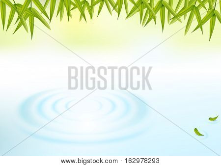 water and bamboo leaves with green natural background