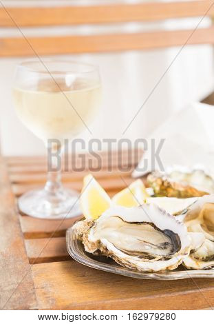 Raw oysters shells and glass of white wine