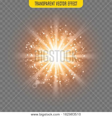 Vector sun light lens flare glare template transparent effect illustration. Glitter beams.