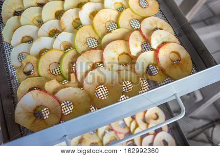 Apples Are Placed In A Dryer