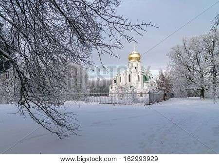 Orthodox white church with golden cupola and trees and ground under snow in winter day