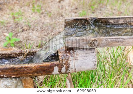 Water steps from natural bamboo pipes in the garden.