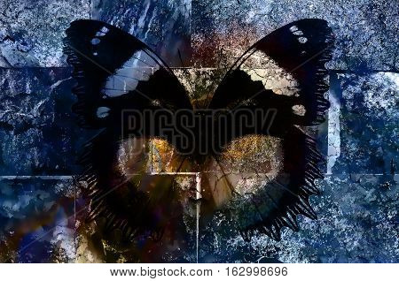 butterfly on crackled wall texture, color crackle background, computer graphic
