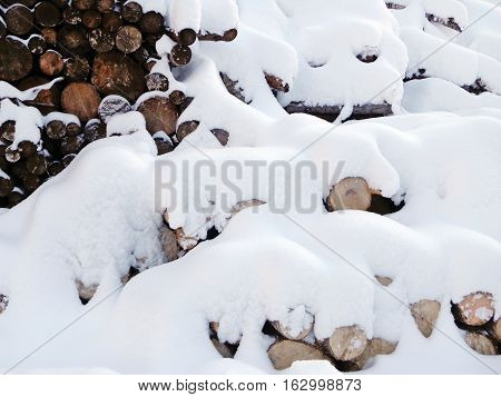 Snow on the logs in the wood storage