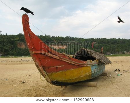 Old fishing boat and birds on the beach.  Chowara, Kerala, South-west India.