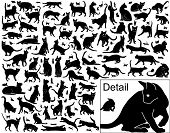 Collection of vector black cats in various positions with basic outlines included poster