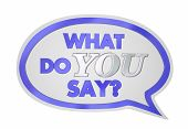 What Do You Say Speech Bubble Opinion Vote 3d Illustration poster