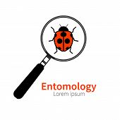 Vector logo icon of entomology biology zoology. Red ladybug beetle bug under magnifying glass. Symbol of research study poster