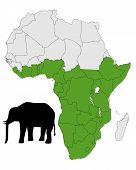 Detailed and colorful illustration of african elephant range poster