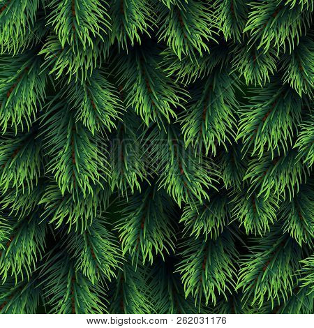 christmas background with green pine branching happy new year vector