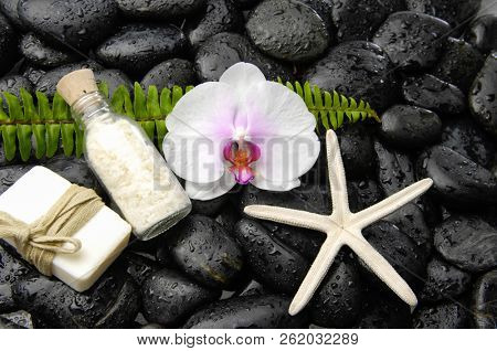 Wet black stones background with white orchid, soap,starfish, ,fern on wet background