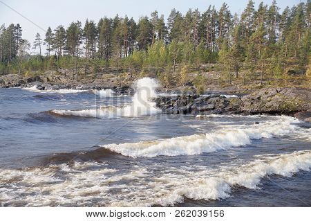 Foaming Waves On The Bay Of The Lake With A Rocky Shore. On Bank Is Growing A Rare Wood. A Clear Day