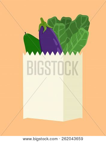 Vegetarian Food In Package, Cucumber And Lettuce Eggplant Collection Of Vegan Products Inside Contai
