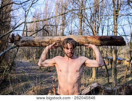 Lumberjack Or Woodman Sexy Naked Muscular Torso Gathering Wood. Explore Woods. Man Beaded Brutal Sex