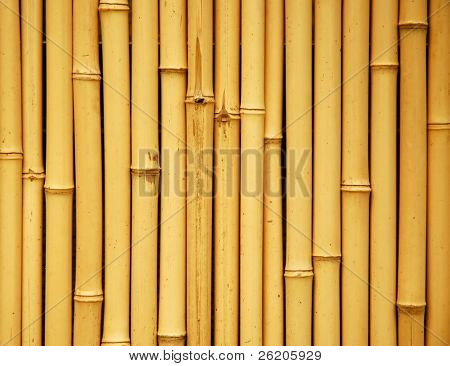 Japanese bamboo background