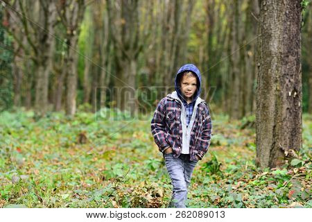 Small Hipster. Small Boy Travel In Autumn Woods. Small Boy Look More Hipster Than Homeless. Because