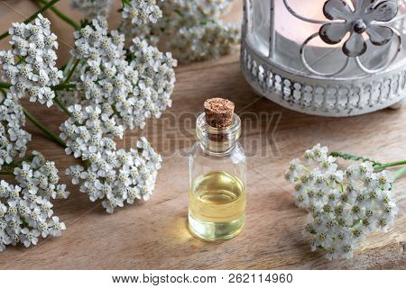 A Bottle Of Essential Oil With Fresh Yarrow Flowers