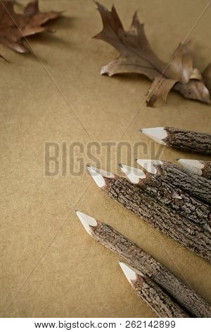 Wooden twig pencils with paper and leaves