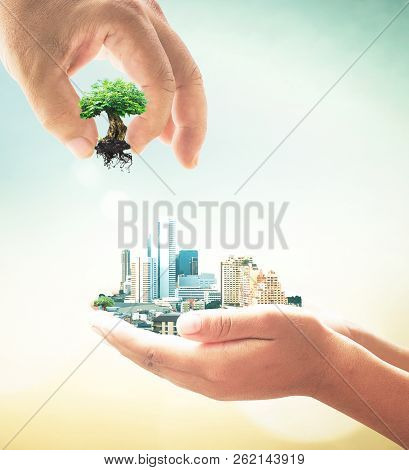 Sustainable Development Goals Concept: Two Human Hand Holding Big Tree And City On Blurred Nature Ba