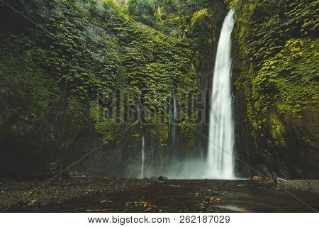 Falling water waterfall, green jungle landscape, Bali. Gorgeous scenery the water falling from the vertical rock lost in the deep jungle. Bali island, Indonesia. Beauty of wild untouched nature.