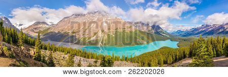 Panoramic View At The Peyto Lake With Rainbow From Bow Summit In Banff National Park, Canadian Rocky
