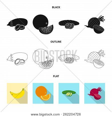Vector Design Of Vegetable And Fruit Icon. Set Of Vegetable And Vegetarian Vector Icon For Stock.