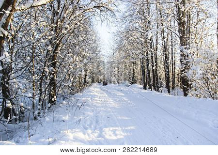 Nature, Landscape, Travel Concept - Beautiful Winter Landscape With Snowy Road In The Winter Forest.