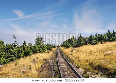 Prairie Landscape With A Railroad Under A Blue Sky With Green Pine Trees