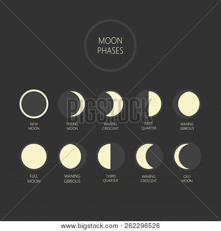 Lunar Phases Vector Illustration. Moon Phase Cycle, New Moon, Full Moon, Waxing And Waning Moon Icon