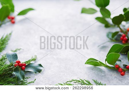 Christmas decorations, holly leaves with red berries. European Holly (Ilex aquifolium) leaves and fruit.