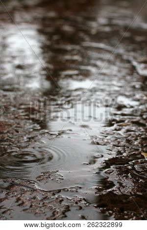 Rain Drops And Rain Puddles On Wet Surface