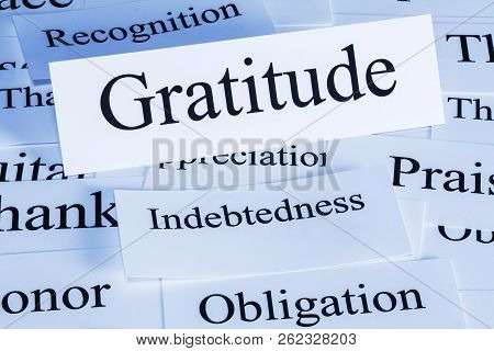 Gratitude Concept - A Conceptual Look At Gratitude, Indebtedness, Recognition, Obligation