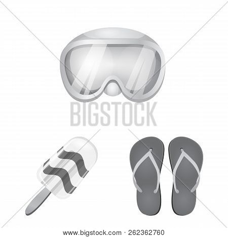 Vector Design Of Equipment And Swimming Icon. Set Of Equipment And Activity Stock Vector Illustratio