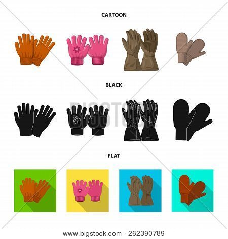 Vector Illustration Of Glove And Winter Sign. Collection Of Glove And Equipment Stock Symbol For Web